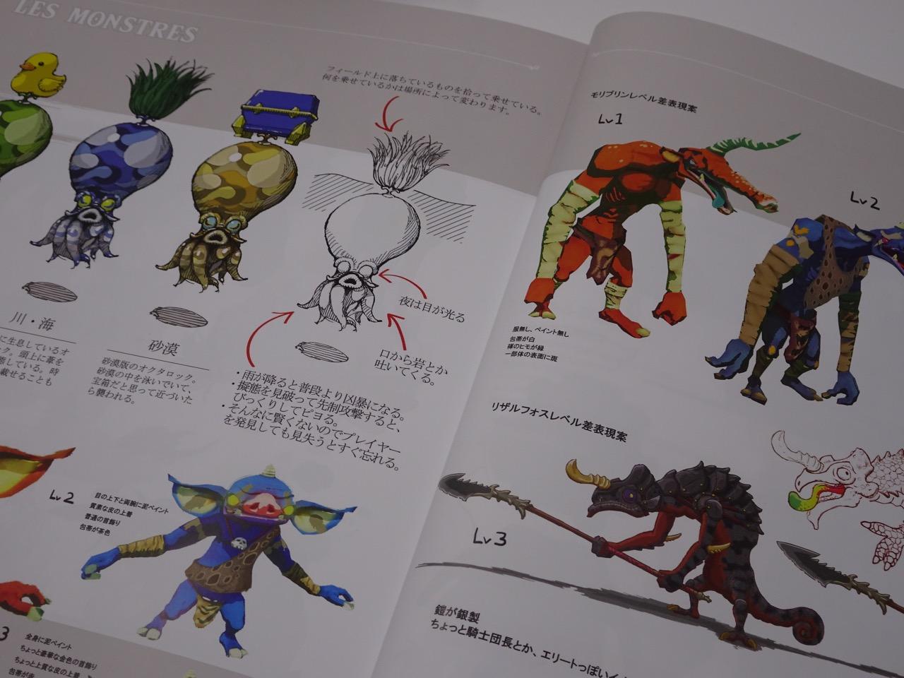 Bonus Guide Edition Collector Zelda Gouaig Fr