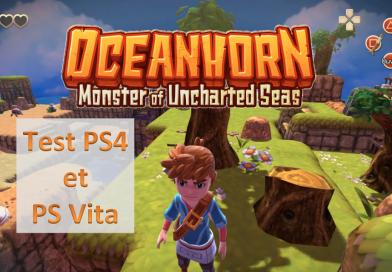 [Test] Oceanhorn (PS4 et PS Vita) : Un passage sur console reussi ?